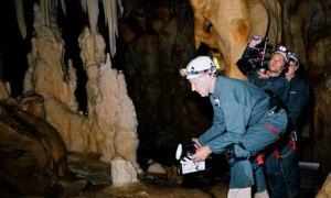 Herzog in Cave of Forgotten Dreams