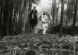 Kuroneko Bamboo Forest