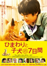 Himawari Chan and Her Puppies Film Poster