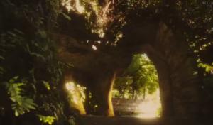 XXXHOLiC (8) Magic Grove