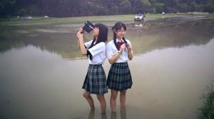 nekoyado film image