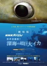 Deep Sea Squid NHK Special Film Poster
