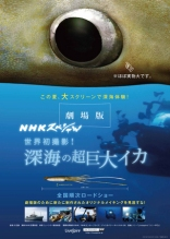 Deep Sea Squid NHK Special Film Poster
