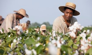 12 Years a Slave Solomon (Ejiofor) Picking Cotton