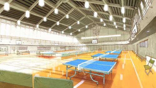Ping Pong Court
