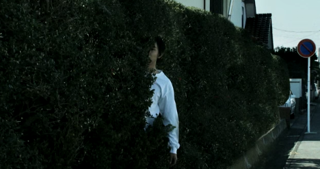 Seeds of Anxiety Seiji in a Bush