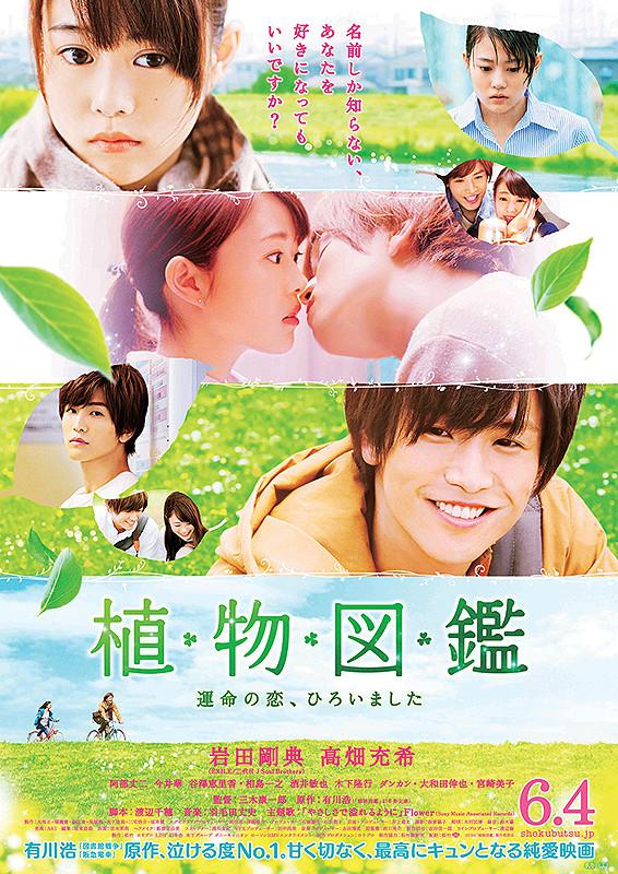 Výsledok vyhľadávania obrázkov pre dopyt evergreen love poster