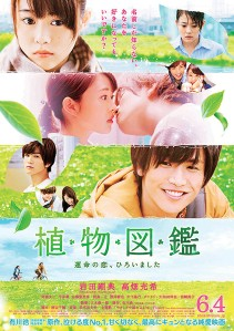Evergreen Love Film Poster