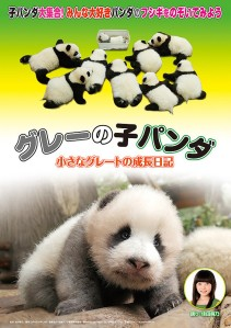 Gure- no ko panda chiisana gure-to no seicho- nikki Film Poster