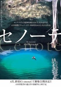 Cenote Film Poster