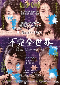 Imperfect World Film Poster