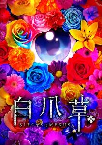 Sirotsumekusa Film Poster